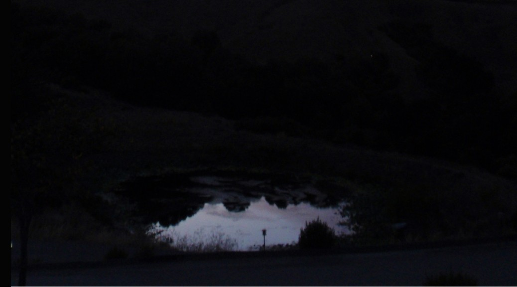 illuminated pond