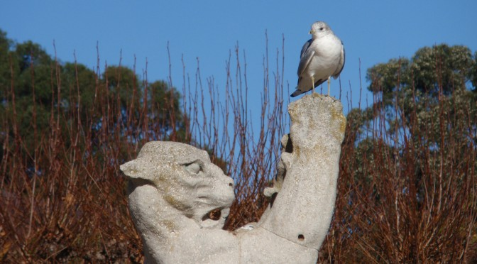 bird and lion statue
